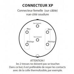 Schéma Connecteur XP